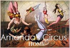 Amanda's Circus
