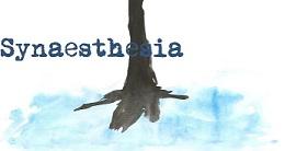 Volare in Synaesthesia Magazine